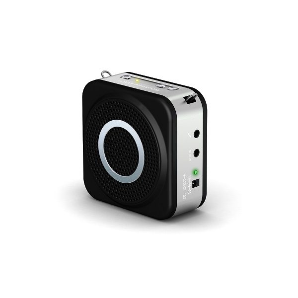 Echo Voice amplifier EV6